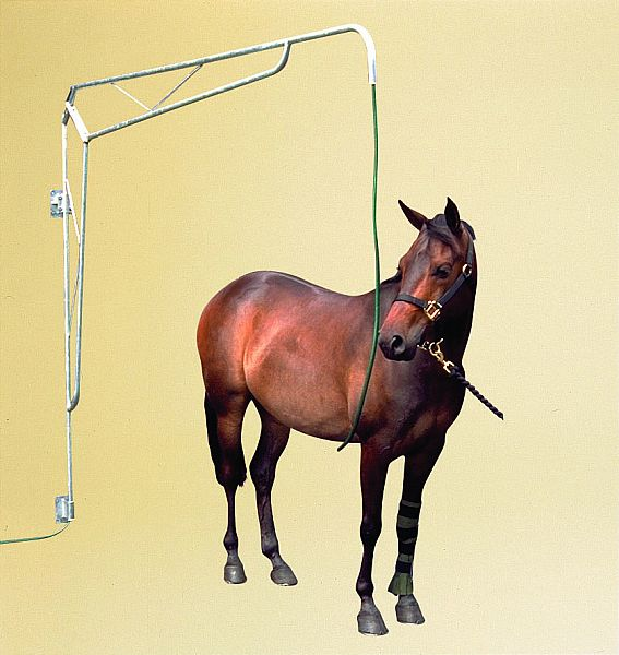 Beautiful SPRAYING BOOM HORSE SHOWER